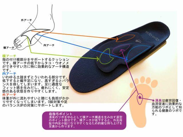 アーチと母指弓ポイント説明図2_R.jpg